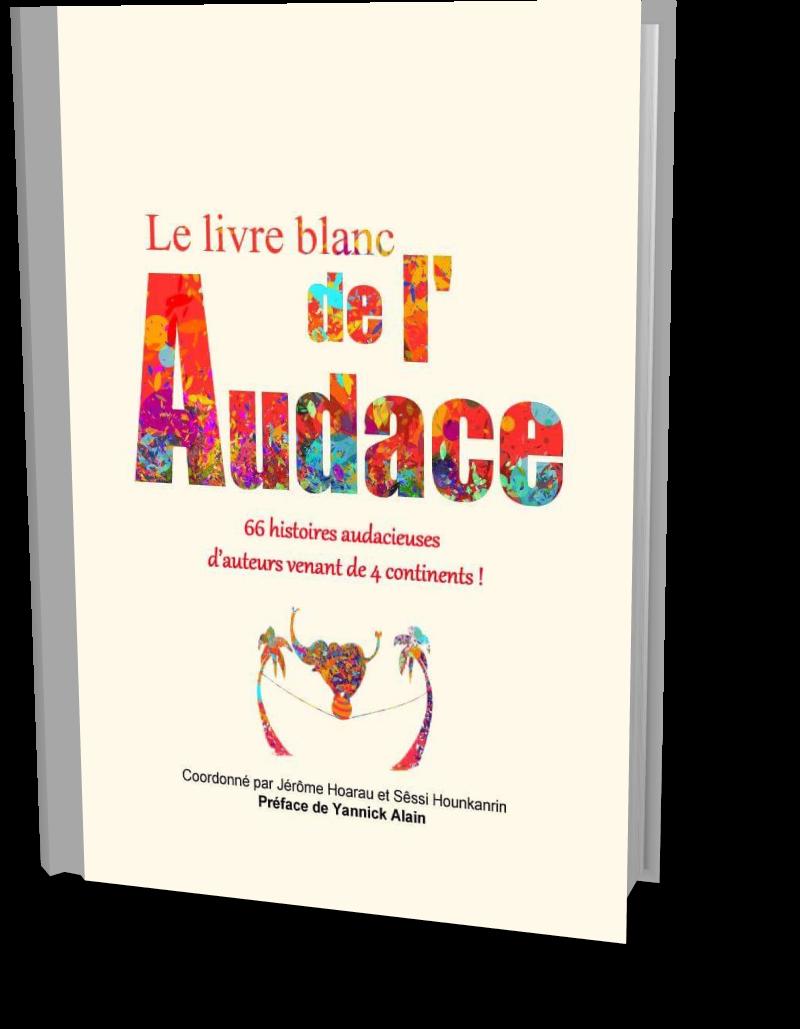 Accueil Le Livre Blanc De L Audace